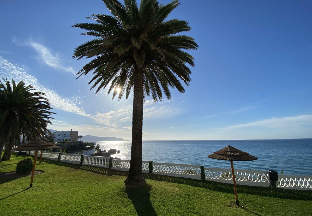 Apartment in Nerja - Acapulco Playa 306 Apartments Casasol